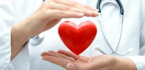 Kardiologin
