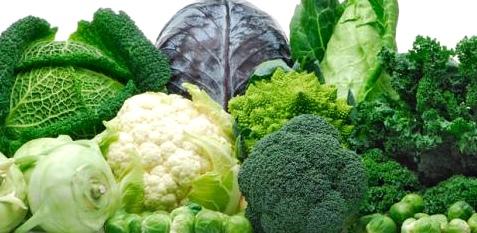 Broccoli schwächt Krebszellen