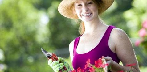 Kein Hexenschuss bei Gartenarbeit
