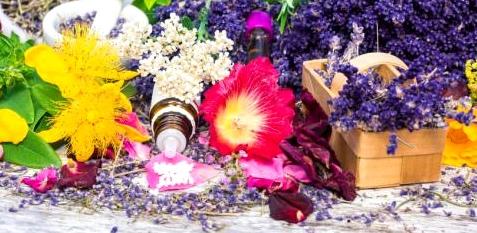 bunte Blumen und Homöopathie