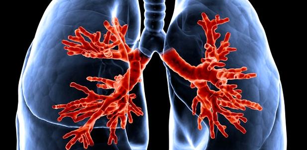 Die Lunge sorgt für den Sauerstoff- Austausch im Blut