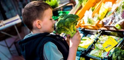 Kleiner Junge schnuppert Brokkoli