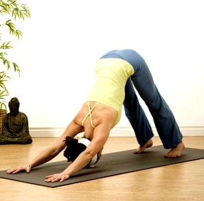 Yoga hilft bei Bluthochdruck: Hund